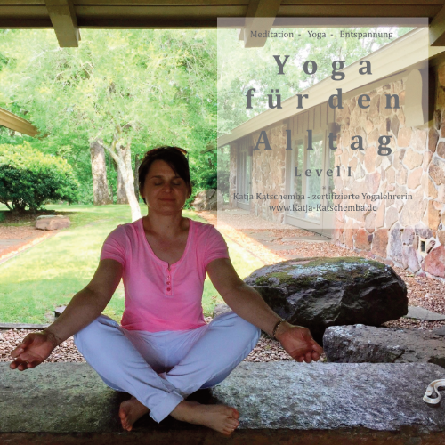 Yoga für den Alltag - Level 1